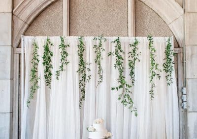 Wedding Cake Backdrop